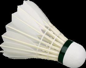 shuttlecock-featherball-91506490087cksexizjrz